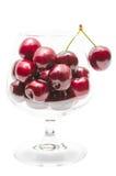 Ягоды зрелой вишни большие в рюмке Стоковые Фотографии RF