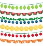 Ягоды и гирлянда плодоовощей Стоковое Изображение RF