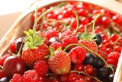 ягоды корзины Стоковые Изображения RF