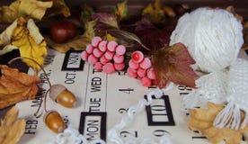 Ягоды красные в изморози на календаре осени Стоковая Фотография