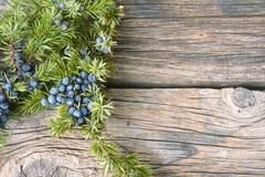 Ягоды можжевельника на винтажной деревянной предпосылке Стоковые Изображения