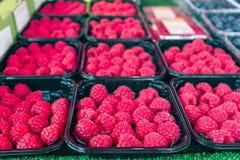 Ягоды на рынке Стоковое Фото
