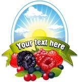 ягоды обозначают естественным Стоковые Фотографии RF