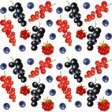 ягоды предпосылки безшовные Стоковое Изображение