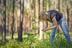 Ягоды рудоразборки маленькой девочки Стоковое Изображение RF
