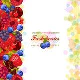 ягоды свежие Вегетарианский свежий сельскохозяйственный продукт Стоковое Изображение RF