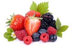 ягоды свежие Стоковое Фото