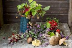 ягоды свежие Стоковые Фото