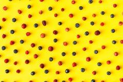 ягоды свежие Стоковые Изображения RF