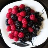 ягоды сочные Стоковая Фотография RF