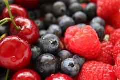 Ягоды, ягоды & ягоды Стоковые Изображения