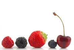 ягоды Стоковое Фото
