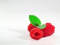 ягоды 3 Стоковые Изображения RF
