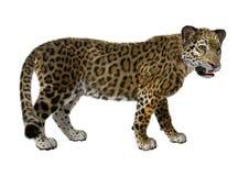 ягуар большой кошки перевода 3D Стоковое Изображение RF
