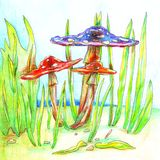 Ядовитые яркие угрожая грибы расцветки голубые и красные в зеленой траве на чертеже glade от эскиза руки с покрашенной ручкой иллюстрация штока