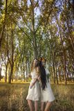 Языческие девушки в лесе деревом Стоковое фото RF
