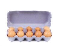 10 яичек в голубой коробке коробки. Стоковое Фото