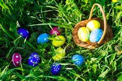 яичек пасхального яйца мальчика предпосылки hunt зеленого цвета травы милых свежий спрятанный изолировал искать белизну Стоковая Фотография