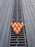 10 яичек цыпленка Стоковые Изображения