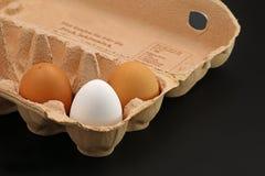 3 яичка Брайна в серой картонной коробке на черной предпосылке стоковое фото