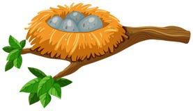 4 яичка в гнезде птицы иллюстрация штока