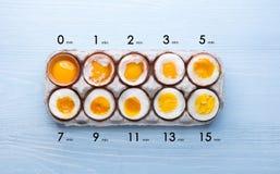 Яичка в разных степенях наличия в зависимости от времени кипя яичек стоковая фотография rf