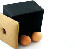 Яичка в черном ящике Стоковое Изображение