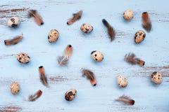 Яичка и пер триперсток на голубых деревянных досках Стоковое фото RF
