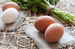 Яичка и петрушка цыпленка Стоковое фото RF