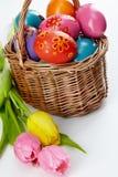 Яичка и тюльпаны Стоковые Фотографии RF
