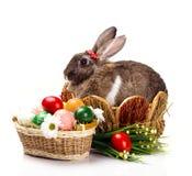 Яичка и цветки кролика пасхи Стоковые Фото