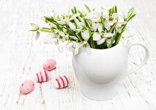 Яичка и snowdrops весны Стоковые Фото