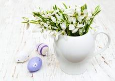 Яичка и snowdrops весны Стоковое фото RF