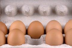 яичка коробки Стоковое Изображение RF