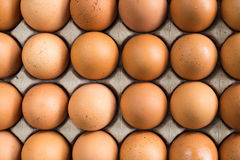 Яичка курицы в пакете подноса прессформы бурой целлюлозы Стоковое Изображение RF