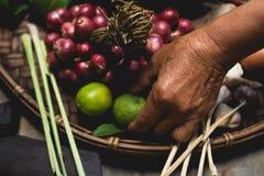 Яичка лимона выставки руки еды Lanna и кухни еды лука руки опытного человека кухни тайской северной тайской деревенские варят Стоковое Изображение