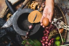 Яичка лимона выставки руки еды Lanna и кухни еды лука руки опытного человека кухни тайской северной тайской деревенские варят Стоковое фото RF