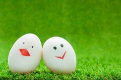 Яичка пар на зеленой предпосылке Стоковое Фото
