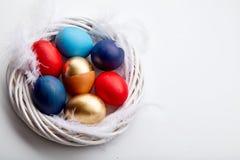 Яичка покрасили различные цвета аранжированный с пер в венке хворостины Стоковые Изображения