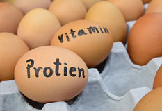 Яичка с словом protien, витамин для концепции еды Стоковое Изображение RF