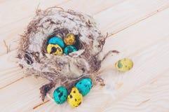 Яичка триперсток в гнезде Стоковые Изображения