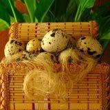 Яичка триперсток, в декоративных корзине и волокне, зеленое растение Стоковое Изображение