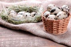 Яичка триперсток в плетеной корзине рядом с гнездом на коричневой предпосылке стоковое изображение