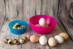 Яичка триперсток и яичка цыпленка в пластичных шарах пинке и сини на внутренности и снаружи в полуокружности на деревянном столе Стоковые Изображения
