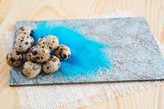 Яичка триперсток на голубых пер предпосылка покрасила вектор тюльпана формы пасхальныхя eps8 красный Стоковое Изображение RF