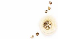 Яичка триперсток пасхи в гнезде и некоторые яичка на близко белой предпосылке Стоковые Изображения RF