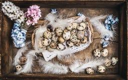 Яичка триперсток пасхи в деревенской корзине с весной цветут на темной деревянной предпосылке стоковое фото