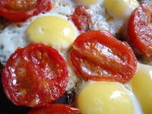 Яичка триперсток с томатами вишни Стоковое Фото