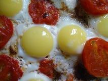 Яичка триперсток с томатами вишни Стоковые Фото