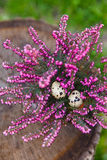 Яичка триперсток с экзотическим розовым цветком Стоковые Фотографии RF